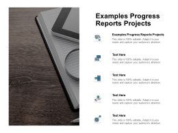 Examples Progress Reports Projects Ppt Powerpoint Presentation Styles Portrait Cpb