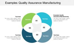 Examples Quality Assurance Manufacturing Ppt Powerpoint Presentation Professional Design Ideas Cpb