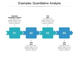 Examples Quantitative Analysis Ppt Powerpoint Presentation Infographic Information Cpb