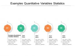 Examples Quantitative Variables Statistics Ppt Powerpoint Presentation Styles Graphics Pictures Cpb
