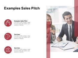 Examples Sales Pitch Ppt Powerpoint Presentation Infographics Display Cpb