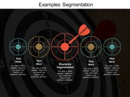Examples Segmentation Ppt Powerpoint Presentation Model Visuals Cpb