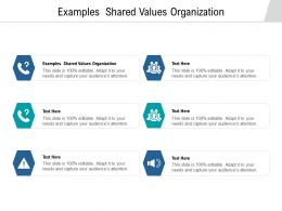 Examples Shared Values Organization Ppt Powerpoint Presentation File Background Images Cpb