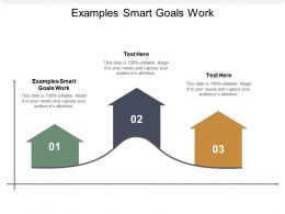 Examples Smart Goals Work Ppt Powerpoint Presentation Deck Cpb
