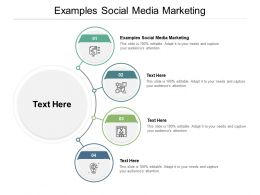 Examples Social Media Marketing Ppt Powerpoint Presentation Show Backgrounds Cpb
