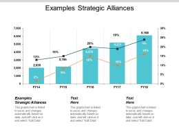 Examples Strategic Alliances Ppt Powerpoint Presentation Gallery Visuals Cpb