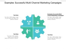 Examples Successful Multi Channel Marketing Campaigns Ppt Powerpoint Presentation Icon Cpb