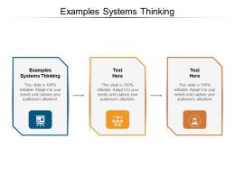 Examples Systems Thinking Ppt Powerpoint Presentation Infographic Template Format Ideas Cpb