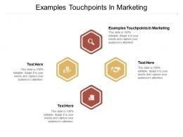 Examples Touchpoints In Marketing Ppt Powerpoint Presentation Layouts Example Topics Cpb