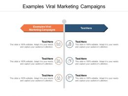 Examples Viral Marketing Campaigns Ppt Powerpoint Portfolio Model Cpb