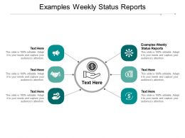 Examples Weekly Status Reports Ppt Powerpoint Presentation Outline Clipart Images Cpb
