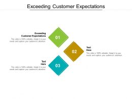 Exceeding Customer Expectations Ppt Powerpoint Presentation Layouts Picture Cpb
