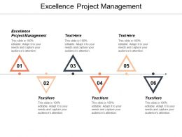 Excellence Project Management Ppt Powerpoint Presentation Show Sample Cpb