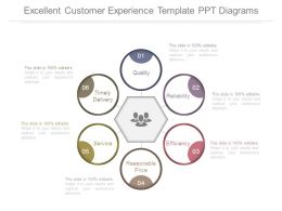 Excellent Customer Experience Template Ppt Diagrams