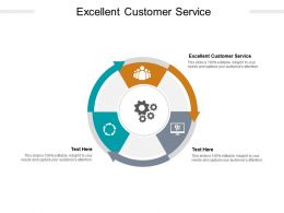 Excellent Customer Service Ppt Powerpoint Presentation Icon Picture Cpb