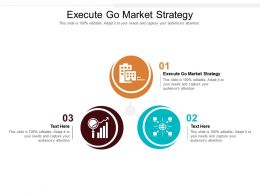Execute Go Market Strategy Ppt Powerpoint Presentation Ideas Graphics Pictures Cpb