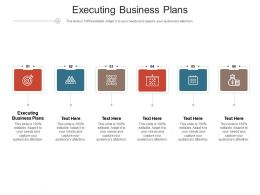 Executing Business Plans Ppt Powerpoint Presentation Styles Pictures Cpb