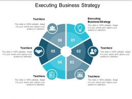 Executing Business Strategy Ppt Powerpoint Presentation Styles Example Introduction Cpb