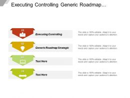 Executing Controlling Generic Roadmap Strategic Assessment Historical Performance