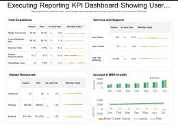 Executing Reporting Kpi Dashboard Showing User Experience And Human Resources