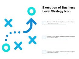 Execution Of Business Level Strategy Icon