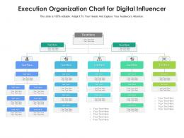 Execution Organization Chart For Digital Influencer Infographic Template
