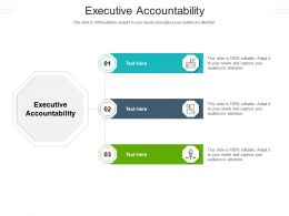 Executive Accountability Ppt Powerpoint Presentation Slides Layout Ideas Cpb