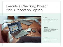 Executive Checking Project Status Report On Laptop