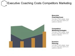 Executive Coaching Costs Competitors Marketing Strategies Incentive Planning Cpb