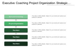 Executive Coaching Project Organization Strategic Review Needs Assessments