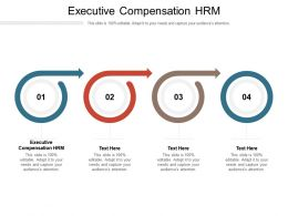 Executive Compensation Hrm Ppt Powerpoint Presentation Outline Topics Cpb