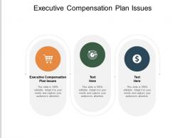 Executive Compensation Plan Issues Ppt Powerpoint Presentation Show Elements Cpb