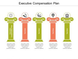 Executive Compensation Plan Ppt Powerpoint Infographic Template Skills Cpb