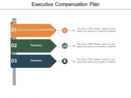 Executive Compensation Plan Ppt Powerpoint Presentation Visual Aids Cpb