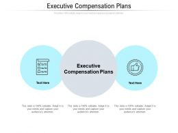 Executive Compensation Plans Ppt Powerpoint Presentation Slides Examples Cpb
