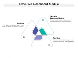 Executive Dashboard Module Ppt Powerpoint Presentation Gallery Design Templates Cpb