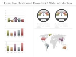 Executive Dashboard Powerpoint Slide Introduction