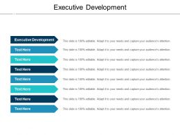 Executive Development Ppt Powerpoint Presentation Slides Diagrams Cpb