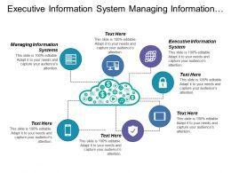 Executive Information System Managing Information Systems Tacit Knowledge