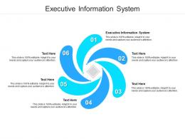 Executive Information System Ppt Powerpoint Presentation Layouts Maker Cpb