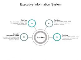 Executive Information System Ppt Powerpoint Presentation Summary Guide Cpb