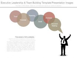 Executive Leadership And Team Building Template Presentation Images