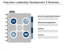 Executive Leadership Development E Business Strategy Models Economic Development Cpb