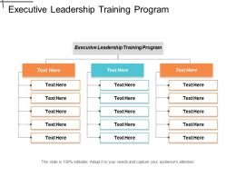 Executive Leadership Training Program Ppt Powerpoint Presentation Layouts Infographic Template Cpb