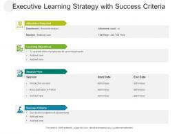 Executive Learning Strategy With Success Criteria