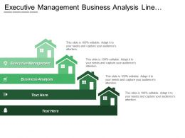 Executive Management Business Analysis Line Operations Resourcing Planning