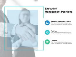 Executive Management Positions Ppt Powerpoint Presentation Ideas Files Cpb