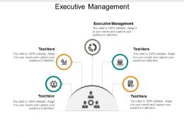 Executive Management Ppt Powerpoint Presentation Gallery Summary Cpb
