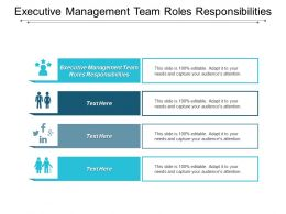 Executive Management Team Roles Responsibilities Ppt Powerpoint Presentation File Cpb