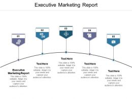 Executive Marketing Report Ppt Powerpoint Presentation Slides Portfolio Cpb
